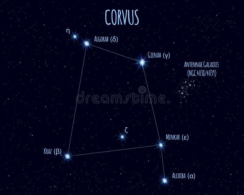 Αστερισμός Corvus, διανυσματική απεικόνιση με τα ονόματα των βασικών αστεριών ελεύθερη απεικόνιση δικαιώματος