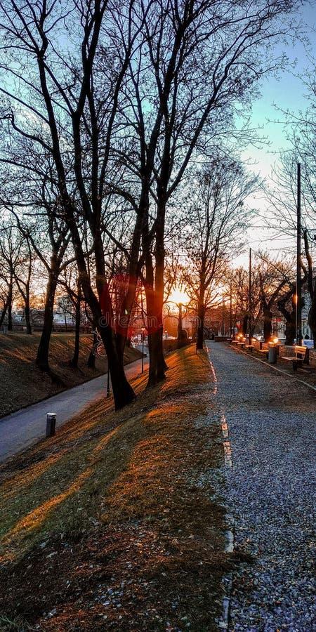 Αστική άποψη ηλιοβασιλέματος στο πάρκο στο Sibiu Ρουμανία στοκ εικόνες με δικαίωμα ελεύθερης χρήσης