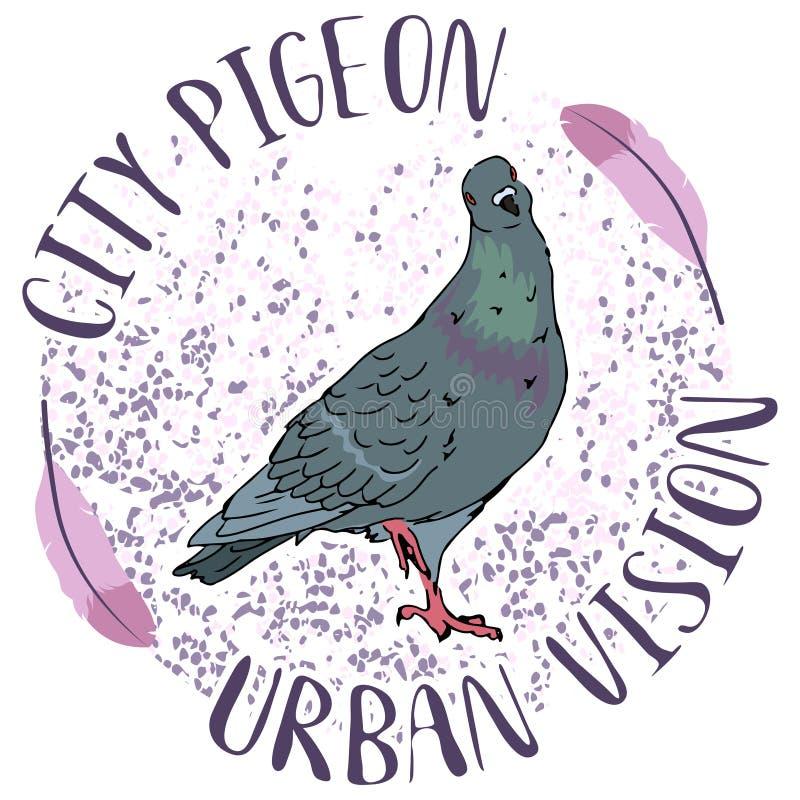 Αστικό πουλί περιστεριών οδών πόλεων στο ρόδινο υπόβαθρο κύκλων με τη editable διανυσματική απεικόνιση φτερών ελεύθερη απεικόνιση δικαιώματος