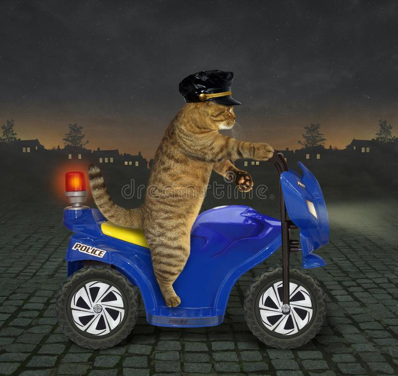 Αστυνομικός γατών σε μια μοτοσικλέτα 2 στοκ εικόνα