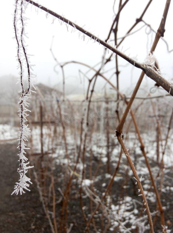 Ασυνήθιστος πάγος στοκ φωτογραφία με δικαίωμα ελεύθερης χρήσης