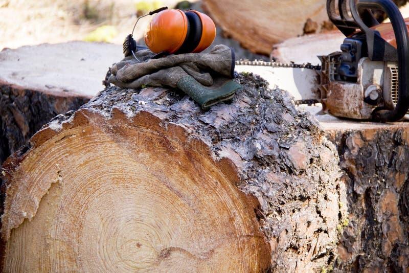 ασφάλεια εμπόρων ξυλεία&sigma στοκ φωτογραφία με δικαίωμα ελεύθερης χρήσης