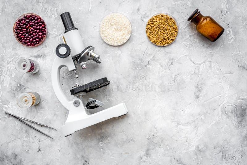 Ασφάλεια των τροφίμων Ο σίτος, το ρύζι και τα κόκκινα φασόλια κοντά στο μικροσκόπιο στην γκρίζα τοπ άποψη υποβάθρου αντιγράφουν τ στοκ φωτογραφία