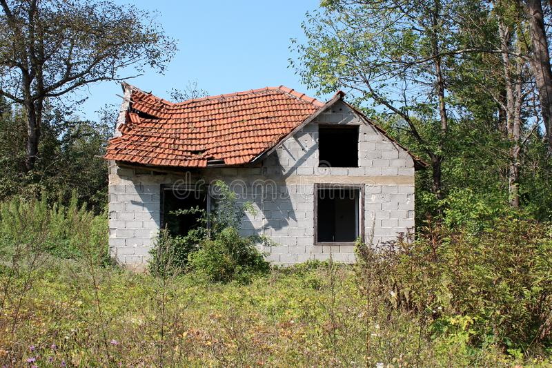 Ατελές μικρό οικογενειακό σπίτι με τα ελλείποντα παράθυρα και την καταρρεσμένη στέγη που περιβάλλονται εντελώς με τη βλάστηση στοκ εικόνες