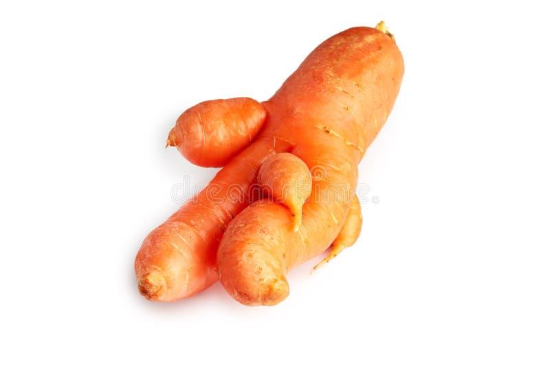 Ατελές φρέσκο οργανικό καρότο στοκ φωτογραφίες με δικαίωμα ελεύθερης χρήσης