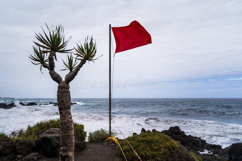 Ατλαντικός Ωκεανός, Tenerife στοκ εικόνα με δικαίωμα ελεύθερης χρήσης