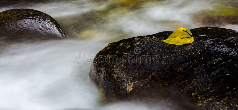 Ατμός βουνών στοκ εικόνες με δικαίωμα ελεύθερης χρήσης