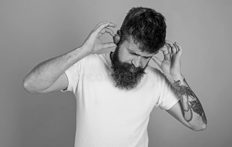 Ατόμων γενειοφόρα αυτιά φραουλών hipster κόκκινα ώριμα ως ακουστικά Το καλοκαίρι χτύπησε την έννοια Η γενειάδα Hipster ακούει φρά στοκ εικόνες