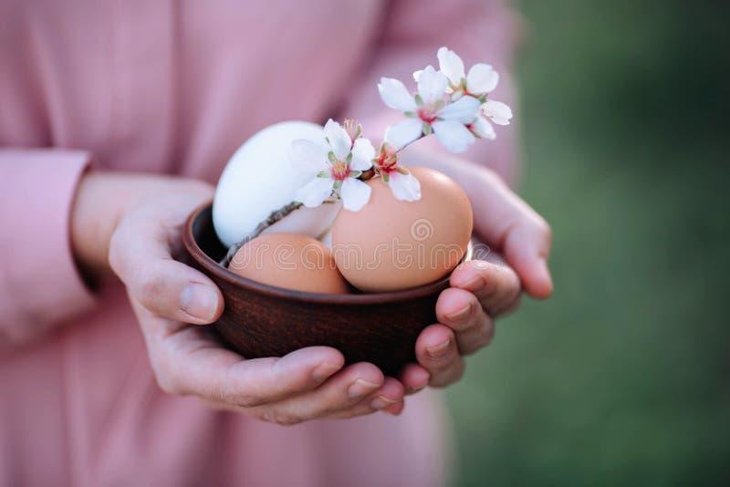 Αυγά για Πάσχα με ένα κλαδάκι των λουλουδιών άνοιξη στα χέρια ενός κοριτσιού στοκ εικόνες