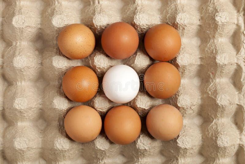 Αυγά καφετιά, άσπρος στην γκρίζα συσκευασία στοκ φωτογραφία με δικαίωμα ελεύθερης χρήσης