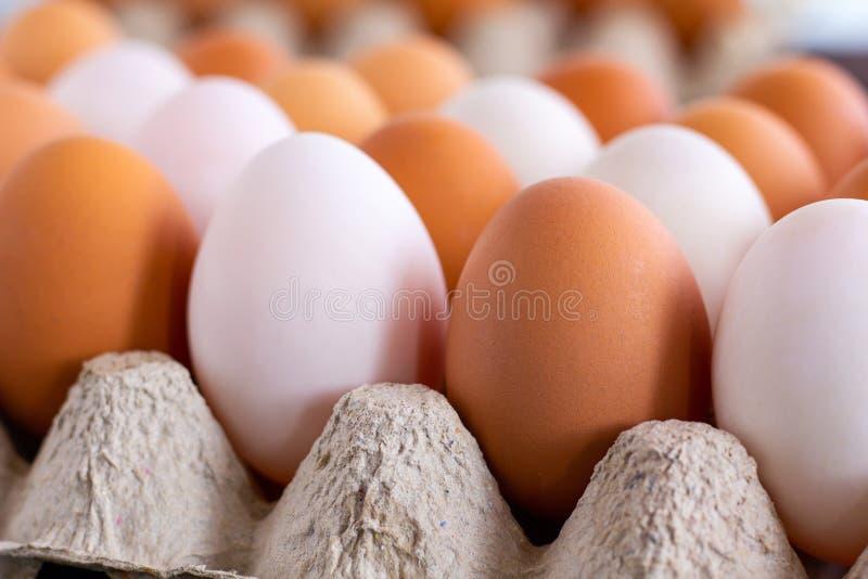 Αυγά κοτόπουλου και παπιών στοκ φωτογραφία με δικαίωμα ελεύθερης χρήσης