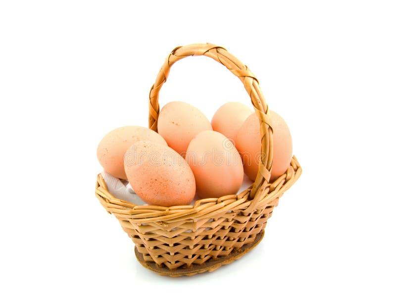 αυγά κοτόπουλου καλάμω στοκ εικόνες