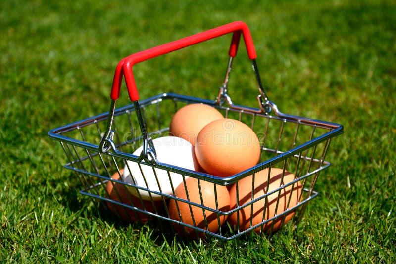 Αυγά κοτόπουλου σε ένα καλάθι αγορών στοκ εικόνα με δικαίωμα ελεύθερης χρήσης