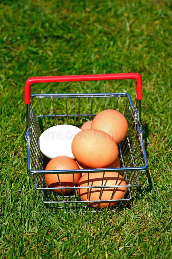 Αυγά κοτόπουλου σε ένα καλάθι αγορών στοκ εικόνα