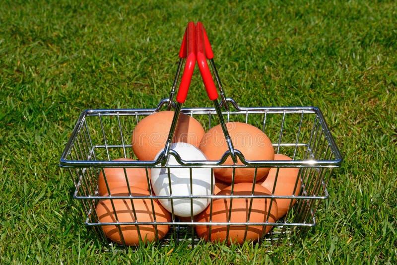 Αυγά κοτόπουλου σε ένα μίνι καλάθι στοκ φωτογραφία με δικαίωμα ελεύθερης χρήσης
