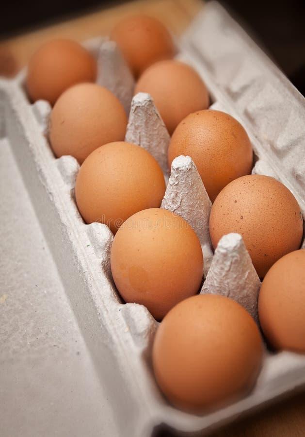 Αυγά κοτόπουλου στο κιβώτιο χαρτοκιβωτίων στοκ εικόνες