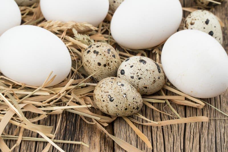 Αυγά κοτόπουλου και ορτυκιών στο άχυρο και τον ξύλινο πίνακα στοκ εικόνες με δικαίωμα ελεύθερης χρήσης