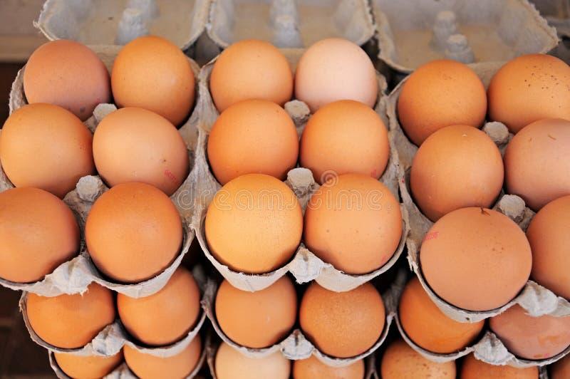 Αυγά κοτόπουλου στα κιβώτια στοκ φωτογραφία με δικαίωμα ελεύθερης χρήσης