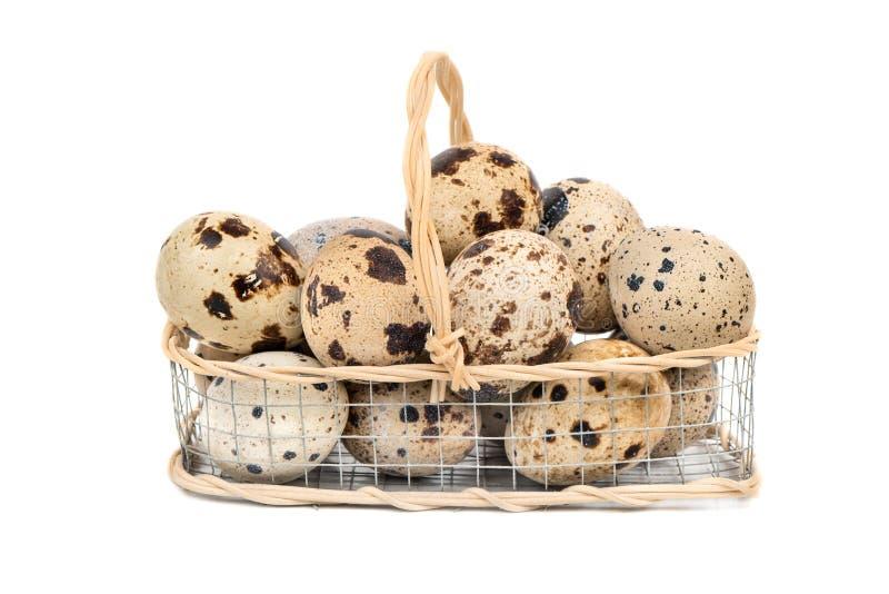 Αυγά νησοπέρδικων στο καλάθι στοκ εικόνες με δικαίωμα ελεύθερης χρήσης