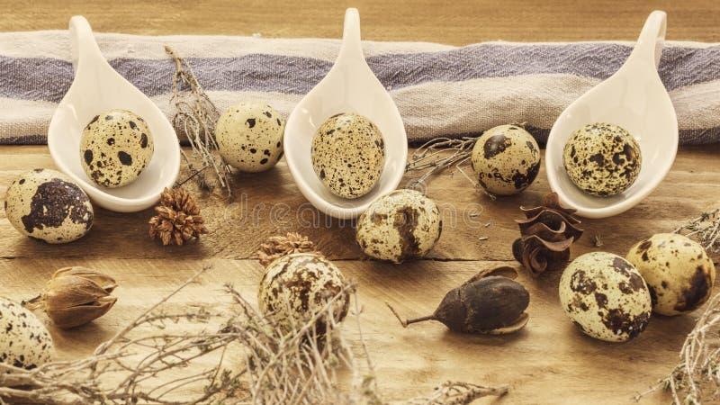 Αυγά ορτυκιών με το ξύλινο υπόβαθρο στοκ φωτογραφία με δικαίωμα ελεύθερης χρήσης