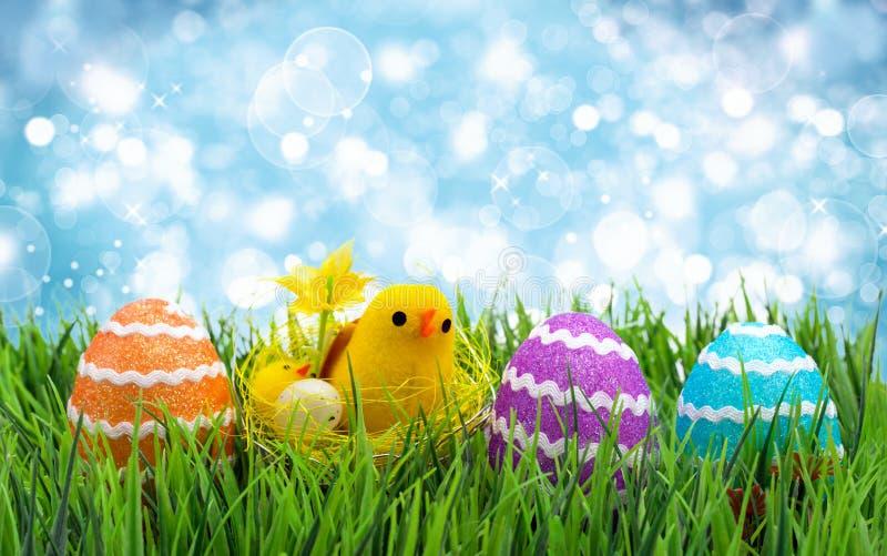 αυγά Πάσχας κοτόπουλων στοκ φωτογραφίες με δικαίωμα ελεύθερης χρήσης