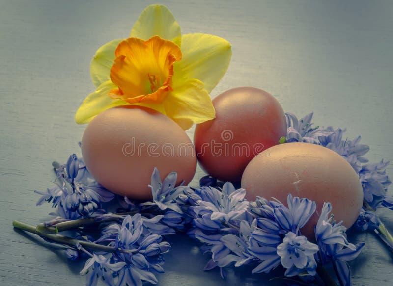 Αυγά Πάσχας με τα bluebells και daffodil στοκ φωτογραφία με δικαίωμα ελεύθερης χρήσης
