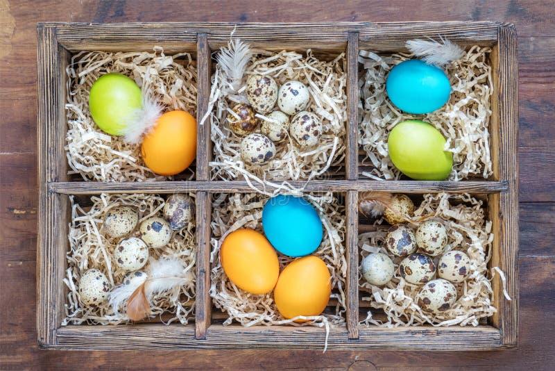 Αυγά Πάσχας στις φωλιές στα κιβώτια κυττάρων στοκ εικόνες με δικαίωμα ελεύθερης χρήσης