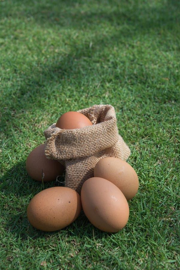 Αυγά σε έναν μικρό burlap σάκο στοκ φωτογραφία με δικαίωμα ελεύθερης χρήσης