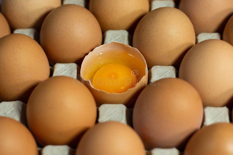 Αυγά στη συσκευασία κιβωτίων χαρτοκιβωτίων στοκ εικόνα