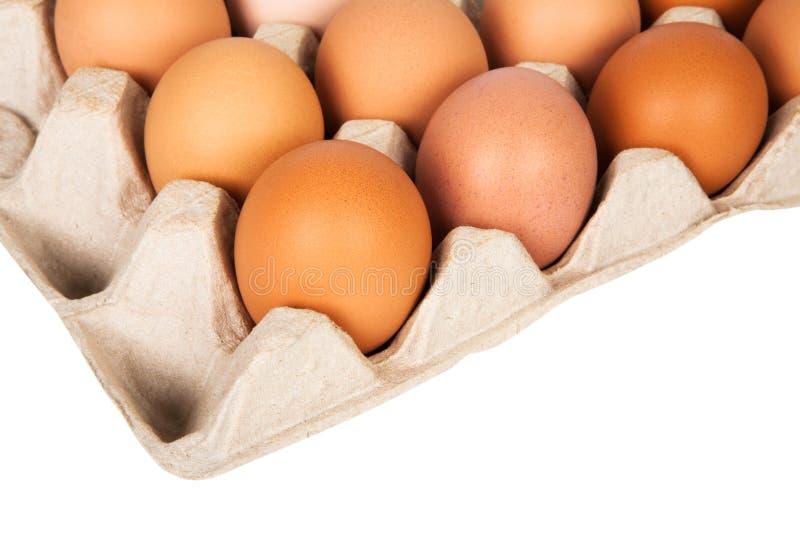 Αυγά στη συσκευασία στοκ εικόνες