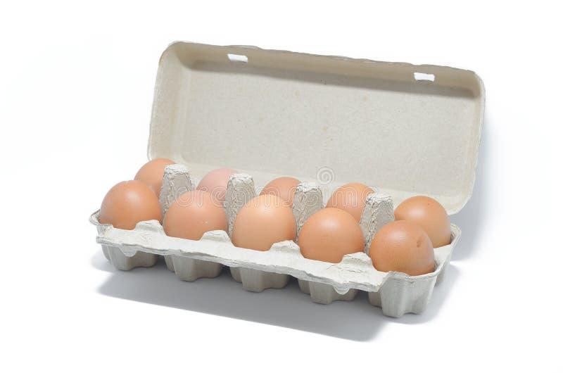 Αυγά στο κιβώτιο χαρτοκιβωτίων στοκ εικόνα