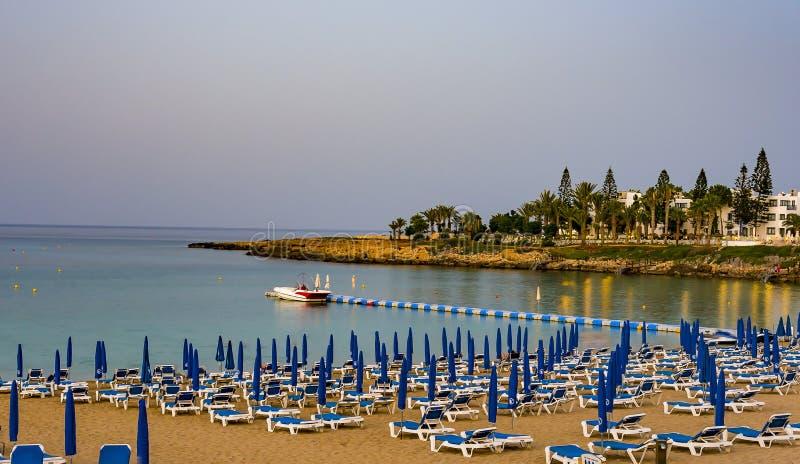 2 Αυγούστου 2017 Protaras Έδρες με τις ομπρέλες στην παραλία στον κόλπο δέντρων σύκων σε Protaras Κύπρος στοκ φωτογραφία