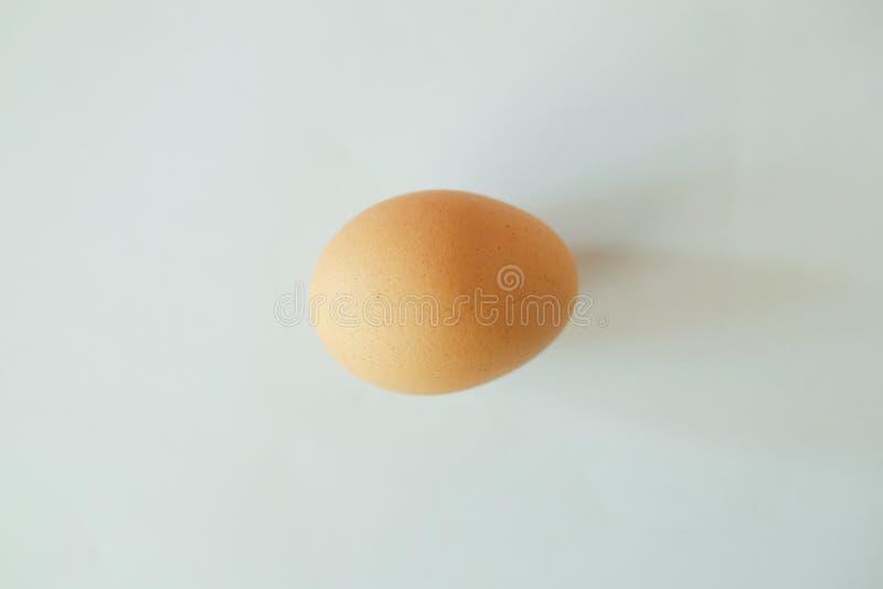 Αυγό κοτόπουλου στο άσπρο υπόβαθρο στοκ φωτογραφία με δικαίωμα ελεύθερης χρήσης