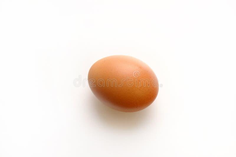 Αυγό κοτόπουλου στο λευκό στοκ φωτογραφία με δικαίωμα ελεύθερης χρήσης
