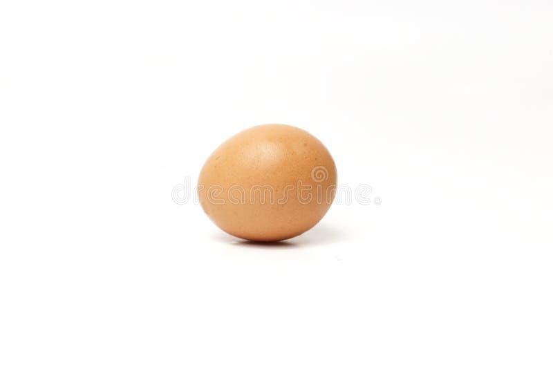 Αυγό κοτόπουλου στο λευκό στοκ φωτογραφία