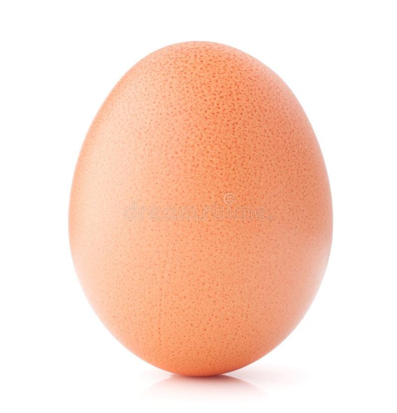 Αυγό που απομονώνεται στην άσπρη διακοπή υποβάθρου στοκ εικόνα