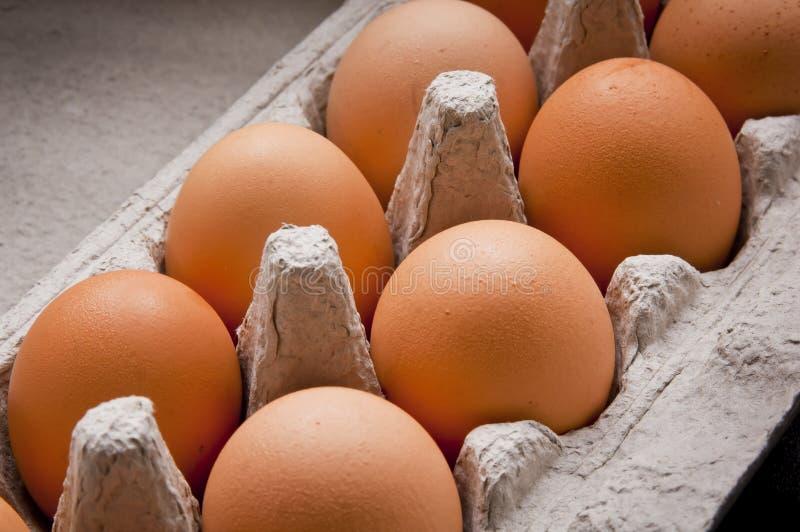 αυγό χαρτοκιβωτίων στοκ εικόνα