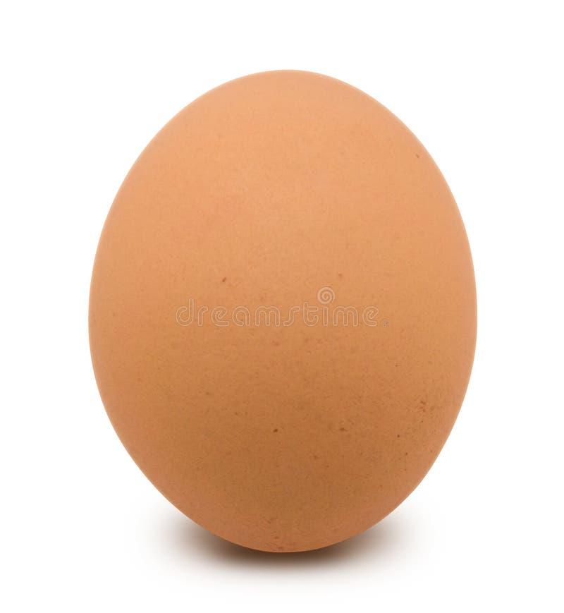 Αυγό Δωρεάν Στοκ Φωτογραφία