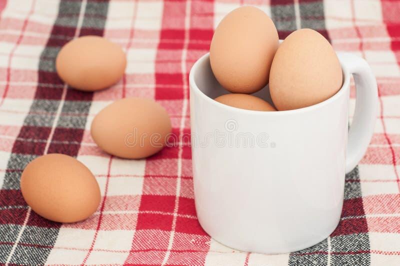 Αυγό στοκ φωτογραφίες