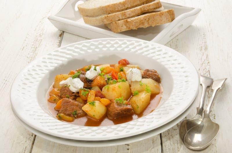 Αυθεντικό ουγγρικό goulash σε ένα πιάτο στοκ εικόνες