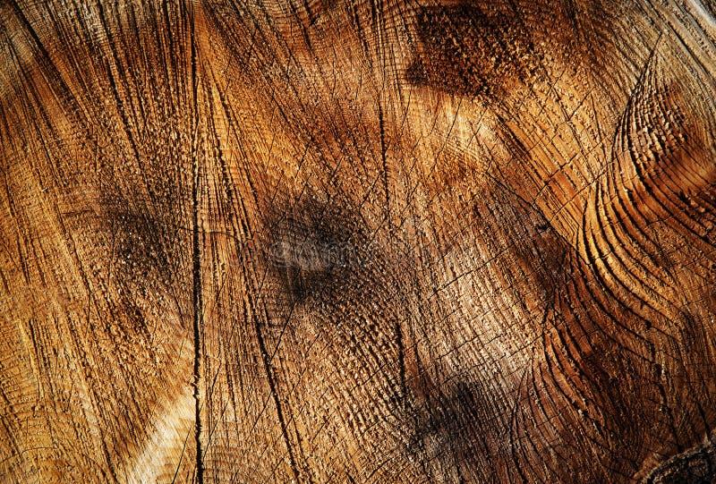 Αυλάκι στην περικοπή του ξύλου στοκ φωτογραφία με δικαίωμα ελεύθερης χρήσης