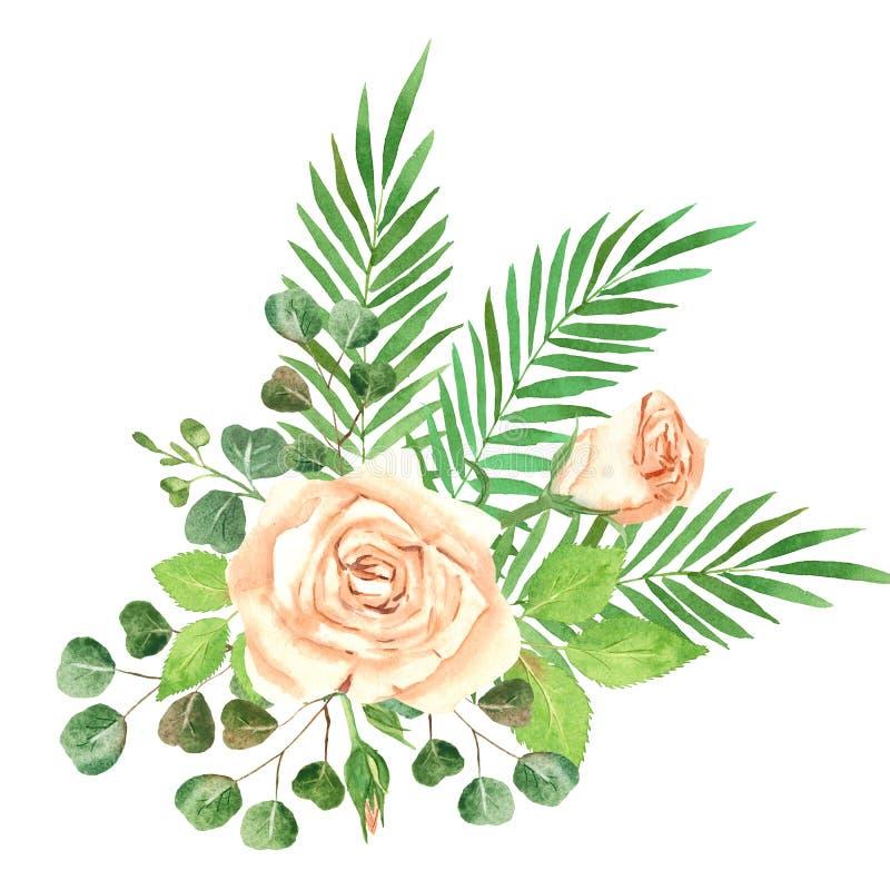 Αυξήθηκε απεικόνιση Watercolor σύνθεσης απεικόνιση αποθεμάτων
