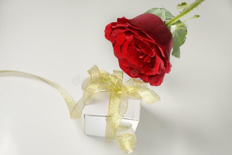 Αυξήθηκε και άσπρο κιβώτιο δώρων με τη χρυσή κορδέλλα στοκ φωτογραφία