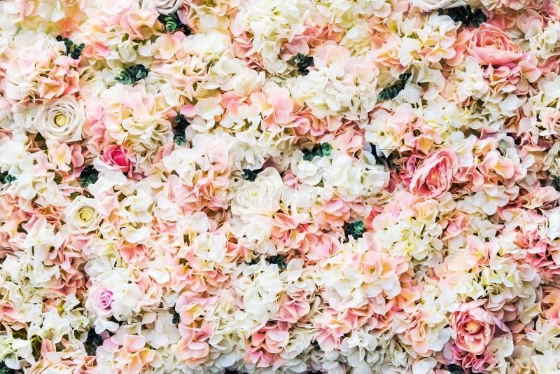 Αυξήθηκε λουλούδια είναι άσπρος και ρόδινος στοκ εικόνα με δικαίωμα ελεύθερης χρήσης