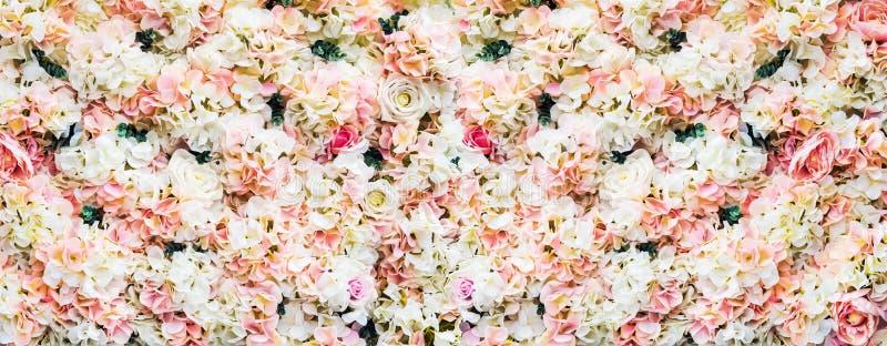 Αυξήθηκε λουλούδια είναι άσπρος και ρόδινος στοκ φωτογραφία με δικαίωμα ελεύθερης χρήσης
