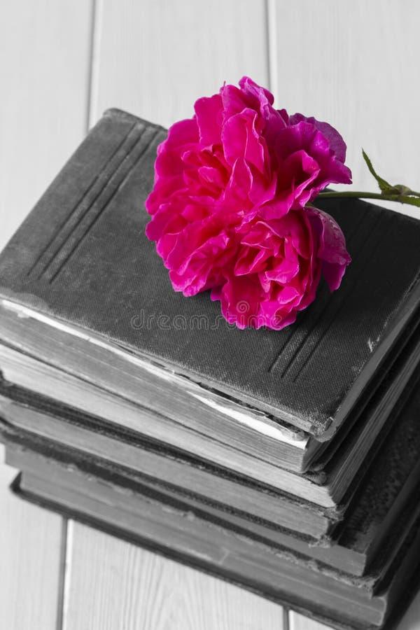 Αυξήθηκε λουλούδι πάνω από έναν σωρό των παλαιών παλαιών βιβλίων Με το εκλεκτικό χρώμα στοκ φωτογραφία με δικαίωμα ελεύθερης χρήσης
