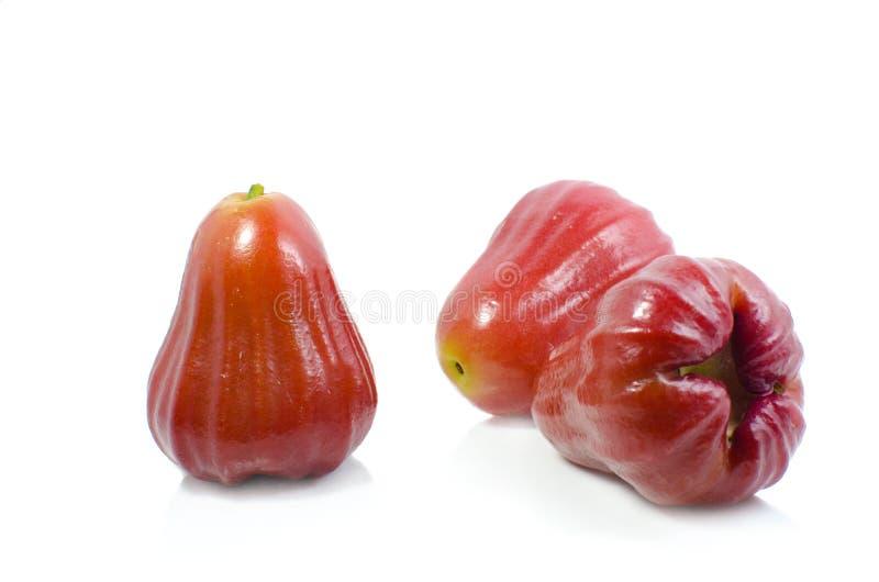 Αυξήθηκε μήλο στο άσπρο υπόβαθρο στοκ φωτογραφία με δικαίωμα ελεύθερης χρήσης