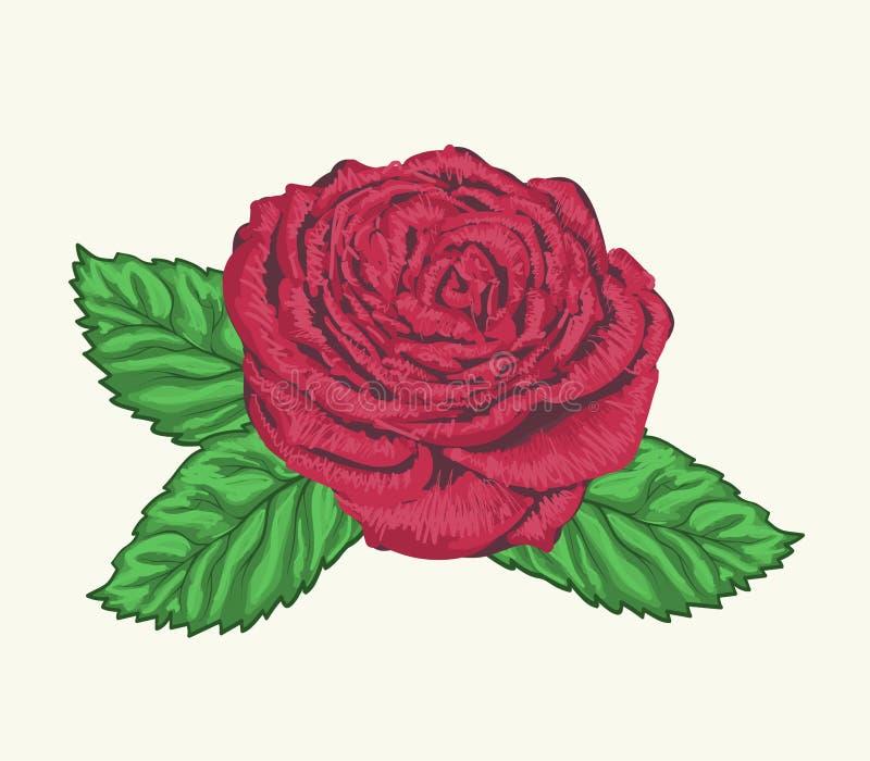 Αυξήθηκε οφθαλμός με τα φύλλα που χρωματίστηκαν στο ύφος watercolor ελεύθερη απεικόνιση δικαιώματος