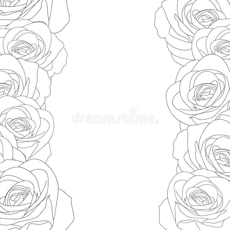 Αυξήθηκε σύνορα περιλήψεων - Rosa που απομονώθηκε στο άσπρο υπόβαθρο διάνυσμα βαλεντίνων αγάπης απεικόνισης ημέρας ζευγών επίσης  διανυσματική απεικόνιση
