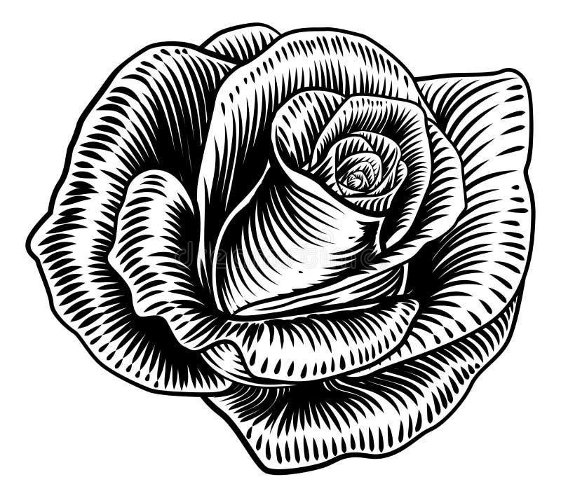 Αυξήθηκε ύφος χαρακτικής ξυλογραφιών λουλουδιών διανυσματική απεικόνιση